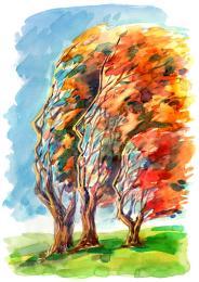 alberi-umani-53252543